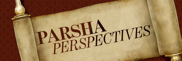 Class Categories Parsha Perspectives